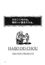 Haijo DD Chou (Series: Dungeons & Dragons/Circle: SHD)-